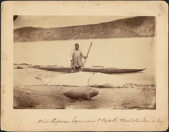 Portrait d'un chasseur avec un béluga, une bouée en peau de phoque et un kayak le long de la Petite rivière de la Baleine, Québec. Photographe : George Simpson McTavish (MIKAN 3264747)