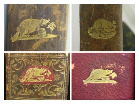 Collage photographique en couleur de quatre estampilles représentant un castor, illustrant les différents styles d'estampilles que l'on retrouve sur les livres.