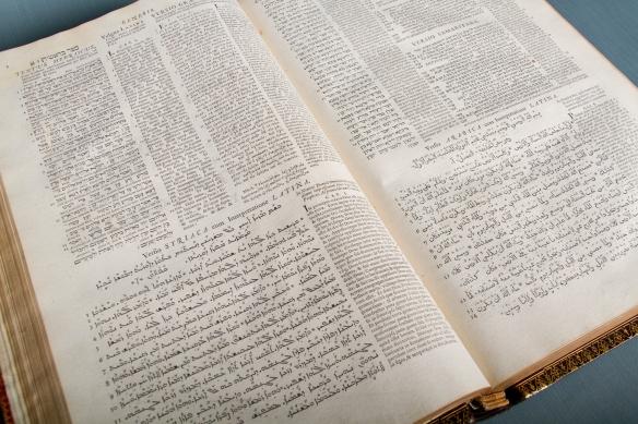 Photographie couleur montrant des textes en plusieurs langues disposés côte à côte.