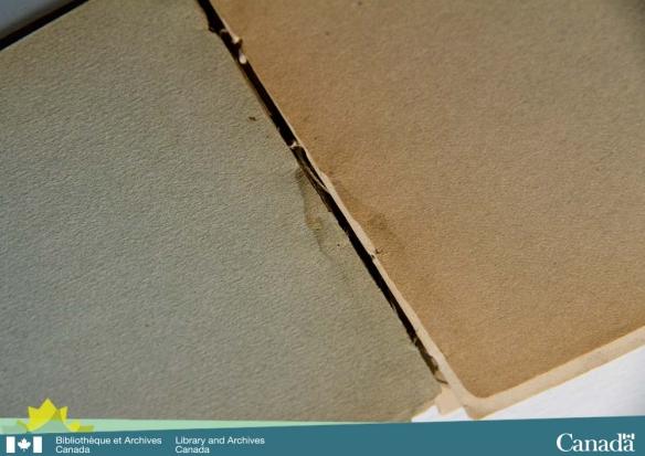 Photographie couleur de la face interne du dos d'un livre montrant une tache d'humidité bordée d'une ligne plus foncée