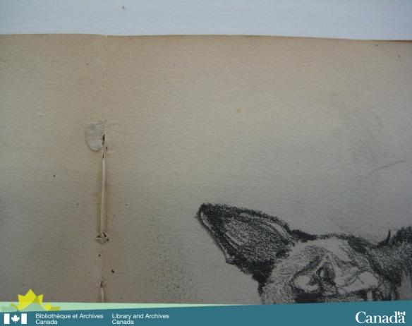 Photographie couleur montrant l'intérieur d'un feuillet; la goutte de colle est parfaitement visible avec la marque correspondante sur la page suivante.