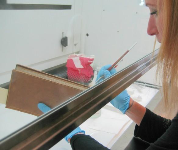 Photographie en couleur montrant une femme tenant un livre dans ses mains gantées et appliquant l'agent de consolidation avec une brosse fine sous une hotte de laboratoire.