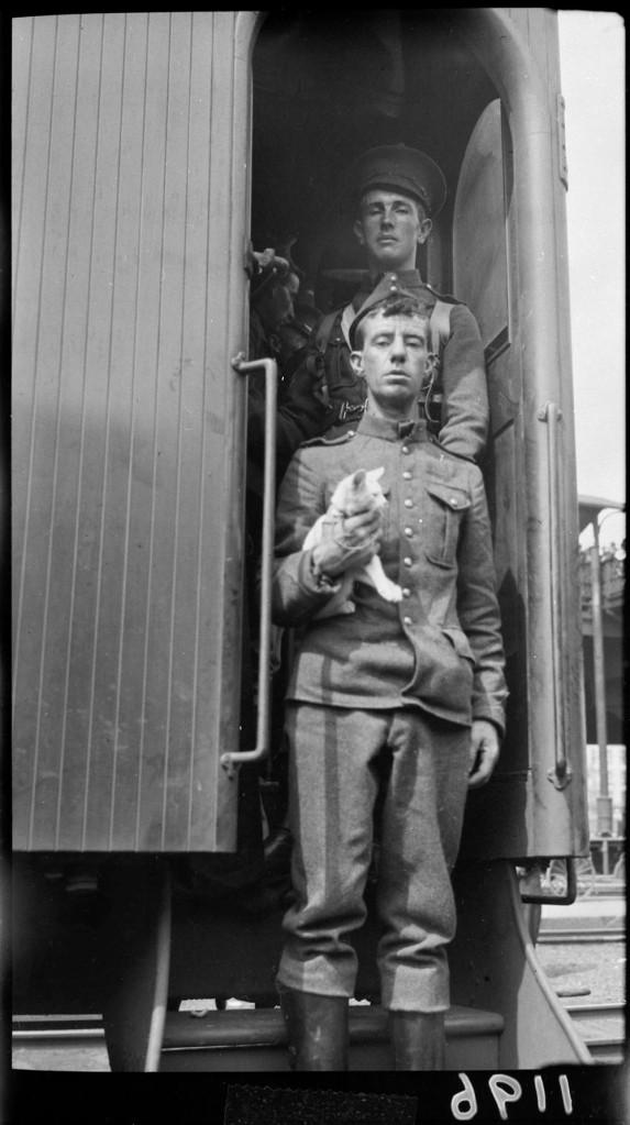 Photo noir et blanc en contre plongée de soldats descendant les marches d'une voiture de train. Les deux regardent le photographe; l'un d'eux tient un chaton dans ses bras.