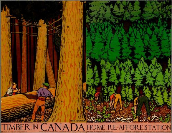 Affiche en couleur montrant deux hommes en train de scier le tronc d'un arbre abattu, à gauche, pendant que trois autres hommes, à droite, plantent des arbres. L'affiche a pour titre : Coupe du bois au Canada.