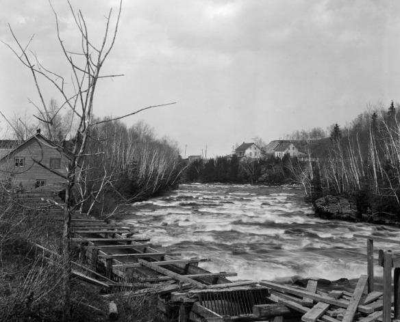 Une photographie en noir et blanc montrant une rivière avec un fort courant, des arbres de chaque côté, et un vieux moulin au fond à gauche