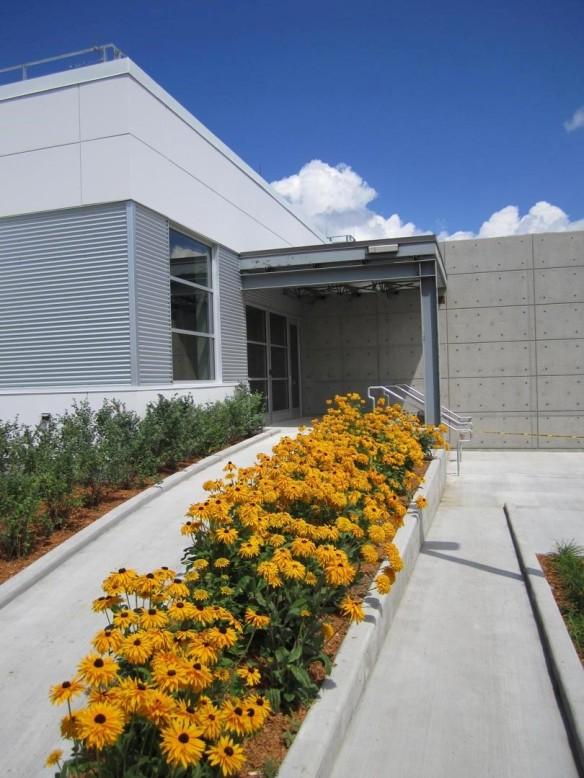 Photographie couleur de l'entrée d'un édifice gris, avec une rangée de fleurs jaunes à l'avant-plan.