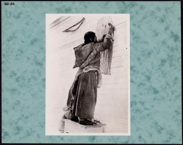 Photo noir et blanc d'une femme inuite qui porte une parka en peau et une jupe longue. Elle se tient debout sur une caisse en bois, dos à la caméra, et gratte une peau de phoque fixée à un mur de bardeaux.