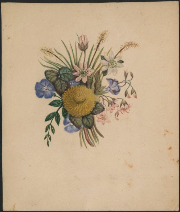 Un pissenlit jaune devant des fleurs sauvages bleues et roses mélangées à des feuilles, peint sur une carte sépia.