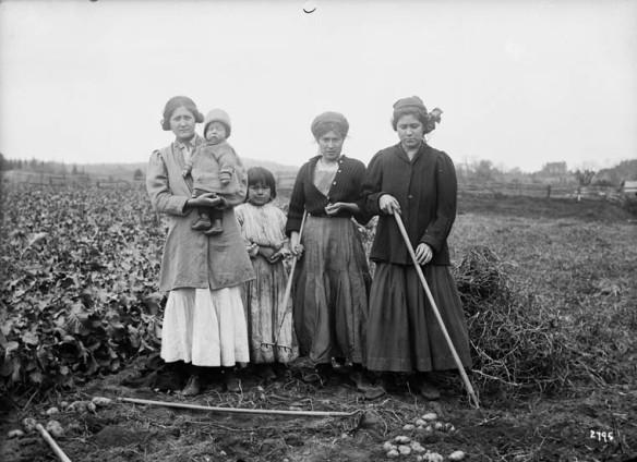 Une photo en noir et blanc de trois femmes et deux enfants dans un champs de pommes de terre