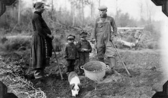 Une photo en noir et blanc montrant une femme enceinte, deux enfants et un homme en train de récolter des patates.