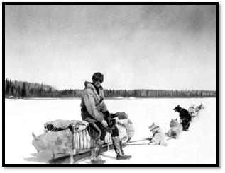 Photographie en noir et blanc d'un homme portant des vêtements d'hiver assis sur un traîneau avec six chiens attelés.