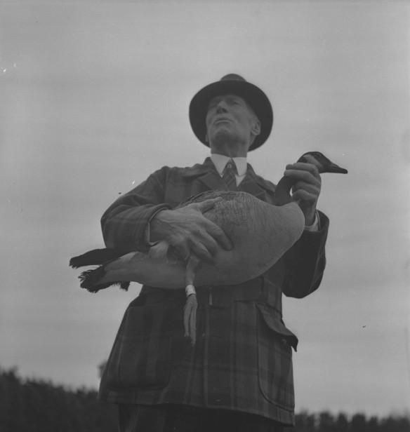 Photographie en noir et blanc d'un homme soutenant une bernache du Canada avec son bras droit et lui tenant le cou avec sa main gauche. Une bague d'identification entoure la patte droite de la bernache