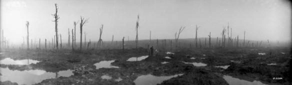 Photographie en noir et blanc d'un paysage dévasté par les bombardements. Le sol boueux est parsemé de cratères remplis d'eau. À l'arrière-plan, une forêt détruite par le feu.
