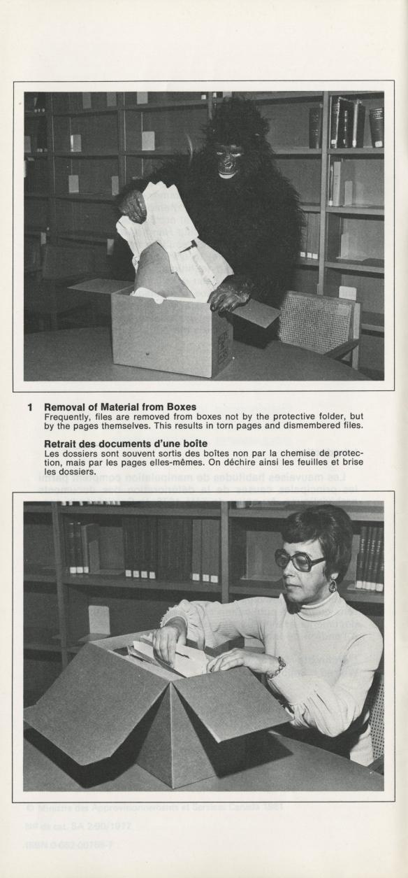 Photographie en noir et blanc montrant les manières inappropriée et appropriée de retirer des documents d'archives d'une boîte. La manière inappropriée est illustrée par une personne déguisée en gorille qui sort de force les documents. La manière appropriée est illustrée par une chercheuse qui retire les documents avec soin.
