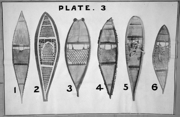 Photographie en noir et blanc montrant six types de longues raquettes composées de divers matériaux et styles de lacis.