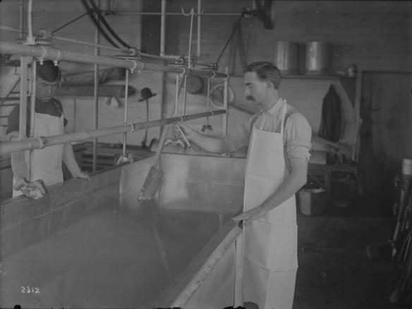 Une photographie en noir et blanc de deux hommes vérifiant la température du lait dans une fromagerie.
