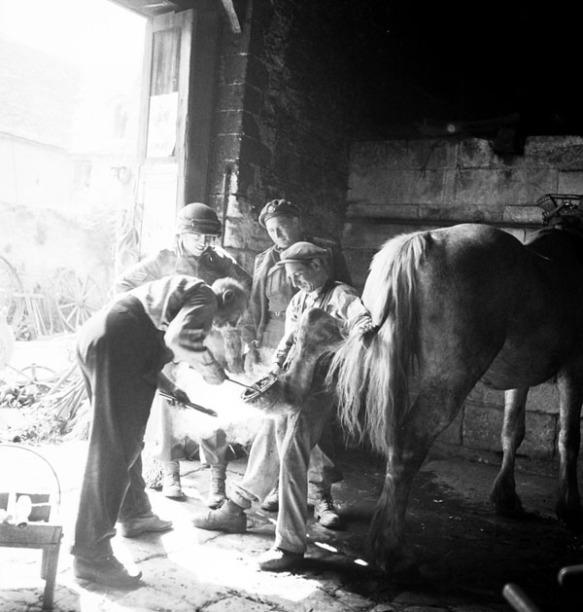 Photographie en noir et blanc de trois soldats observant un forgeron ferrant un cheval.