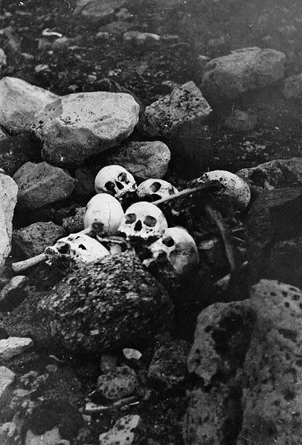 Photographie en noir et blanc montrant cinq crânes déposés sur des rochers sombres. Ils furent découverts en 1945 pendant une expédition menée par William Skinner et Paddy Gibson.