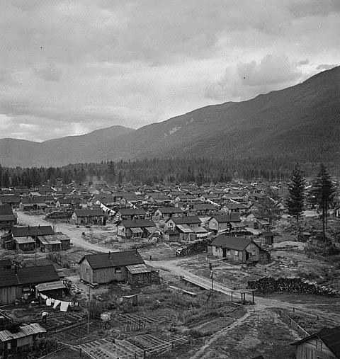 Photo noir et blanc de rangées de baraques dans un camp d'internement.Pourquoi les déportés ont-ils signé pour aller au Japon?
