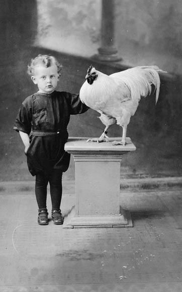 Photo noir et blanc d'un jeune garçon. À sa gauche se trouve un coq blanc sur un piédestal.