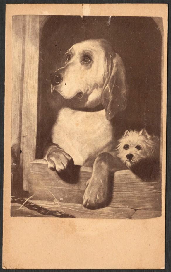 Photolithographie noir et blanc montrant deux chiens (un gros et un petit) dans leur niche, regardant vers l'extérieur.
