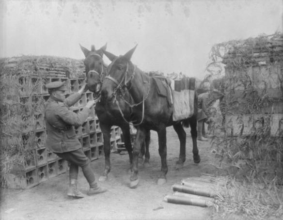 Photo noir et blanc d'un soldat essayant de faire avancer deux mulets.