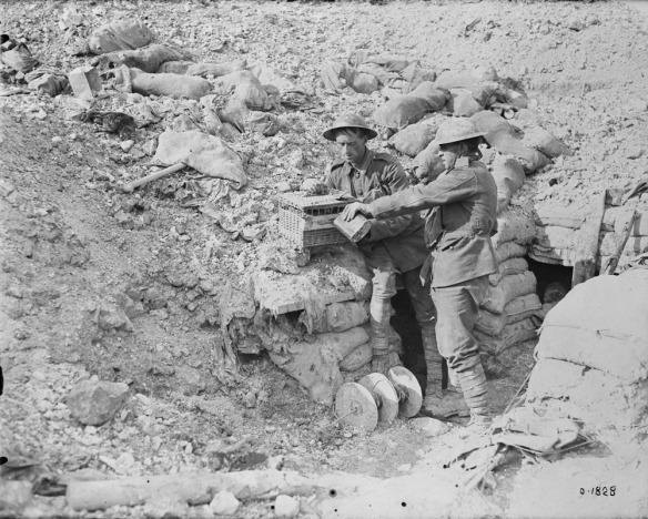 Photographie noir et blanc de deux soldats dans une tranchée abreuvant, à l'aide d'une gourde, leurs pigeons voyageurs enfermés dans un panier de transport.