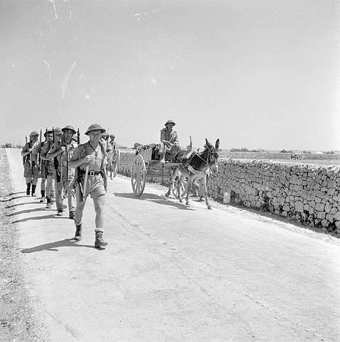 Photo noir et blanc de soldats marchant sur une route. Ils sont dépassés par un soldat conduisant une charrette tirée par un âne.