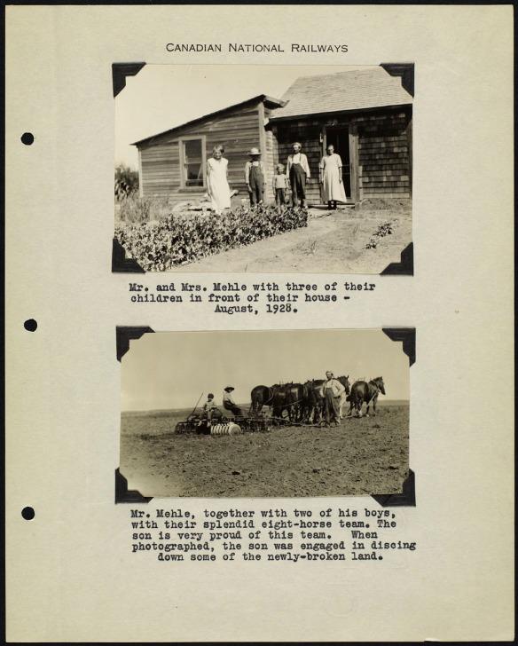 Page d'album avec deux photos noir et blanc, l'une montrant une famille debout devant une maison, et l'autre montrant un attelage de chevaux tirant une charrue. Chaque photo est accompagnée d'une légende dactylographiée.