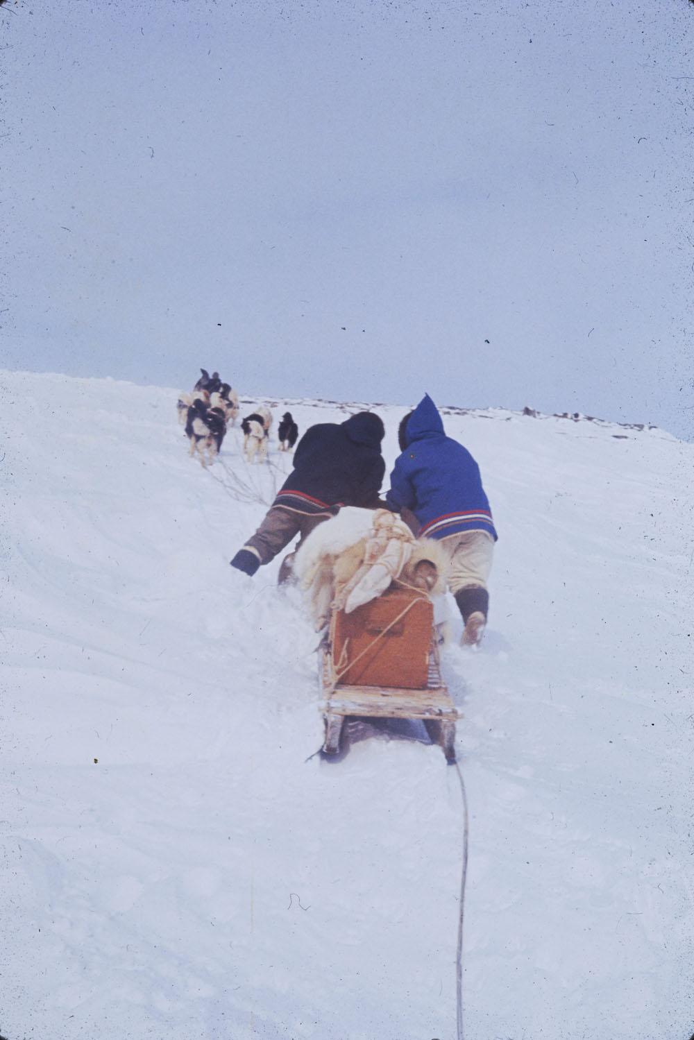 Photo couleur de deux hommes avec un attelage de chiens tirant un traîneau vers le sommet d'une colline.