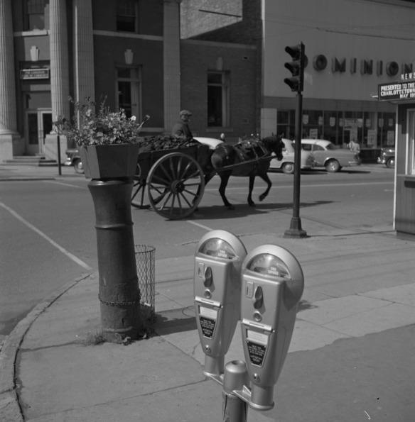 Photographie noir et blanc d'un double parcomètre en bordure d'une rue. En arrière-plan, on voit une charrette tirée par un cheval circulant dans la rue et des automobiles stationnées de biais près du trottoir.