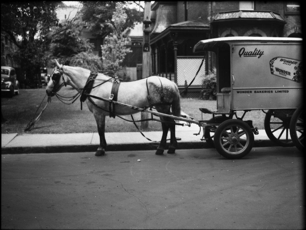 Dans une rue résidentielle, un cheval tire un chariot sur lequel figurent les mots « Quality », « Wonder Bakeries Limited » et l'image d'une miche de pain Wonder Bread.