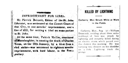Deux colonnes de texte tirées de journaux, dont les titres sont « Imprisonment for Libel » et « Killed by Lightning ».