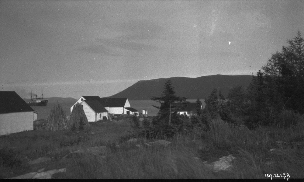 Photo noir et blanc d'un paysage d'arbres et de maisons aux toits noirs. À l'arrière-plan, on voit un bateau sur l'eau.