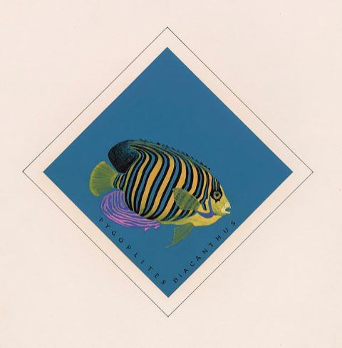 Dessin couleur montrant un poisson aux couleurs vives avec des rayures jaunes, bleues et noires sur un arrière-plan bleu.