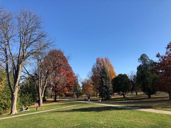 Photo couleur d'un parc urbain avec des arbres et des sentiers.
