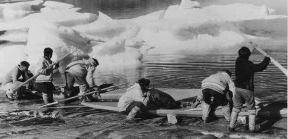 Photo noir et blanc de six chasseurs inuit chargeant leurs qajaqs de matériel de chasse.